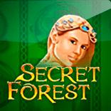 """""""Игровой автомат Разгадай загадки волшебного леса в слоте Secret Forest"""""""